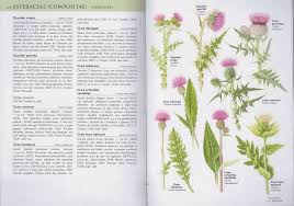 guides nature bilingues
