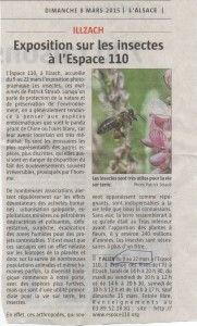 photo de l'article presse