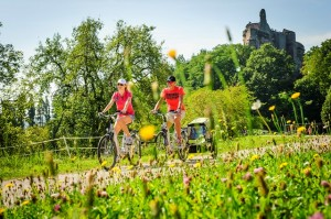 sur les chemins en vélo électrique en Alsace
