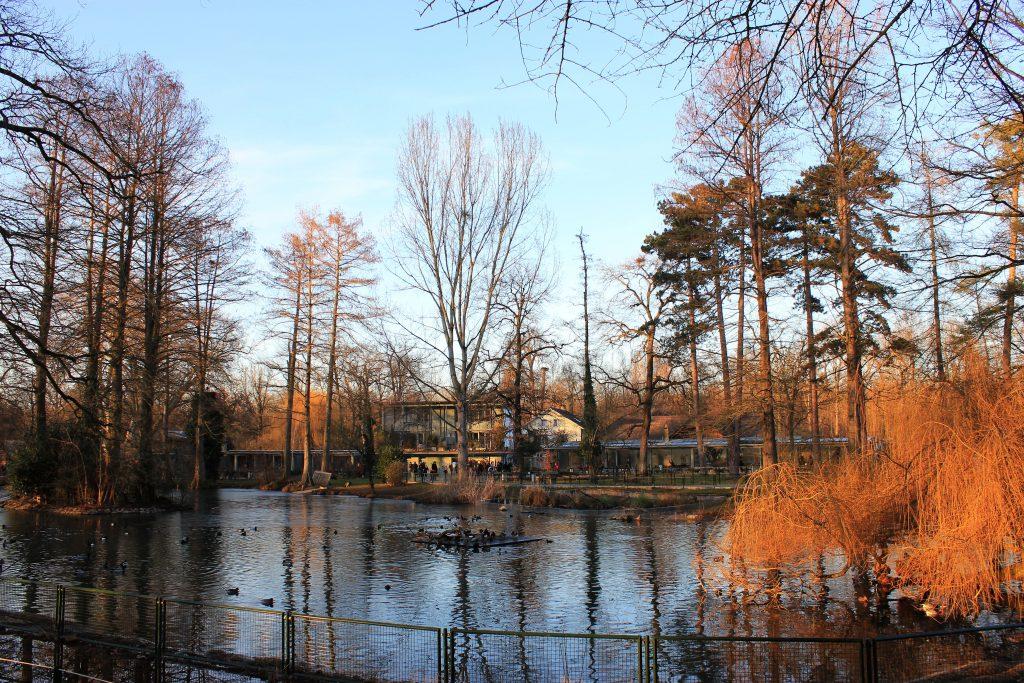 Basel Tier Park Lange Erlen