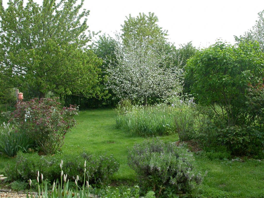 jardin plein de vie